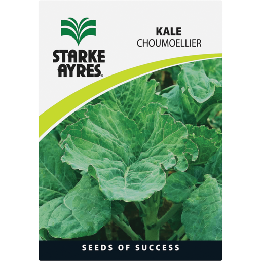 Starke Ayres Kale Variety Vegetable Seeds